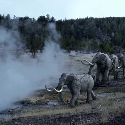 The use of smoke in ice age landscape